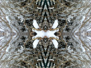 Fourth Impressions VIII color photography collage by architect Ernesto Santalla celebrating winter snow in Washington, DC